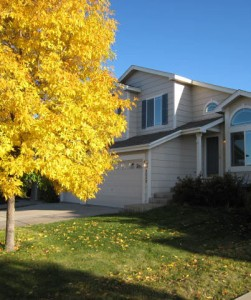 Highlands Ranch fall color from Denver Realtor